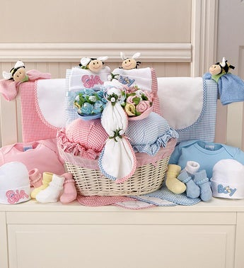 Pink  Blue Twin Newborn Gift Basket