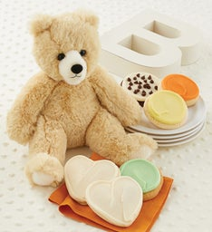 Welcome Baby Bear Plush Treats Gift