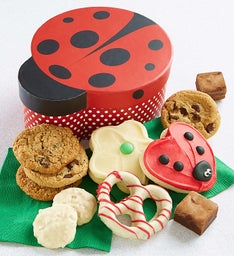 Lady Bug Gift Box