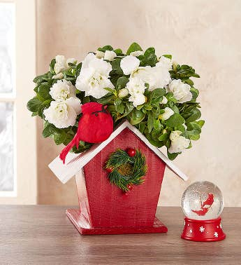 Christmas Birdhouse of Blooms