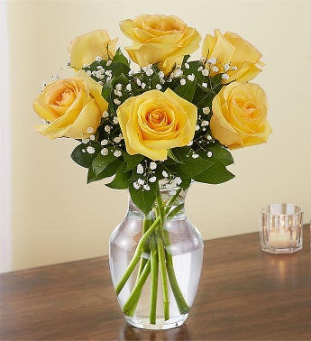 Loves Embrace Yellow Roses