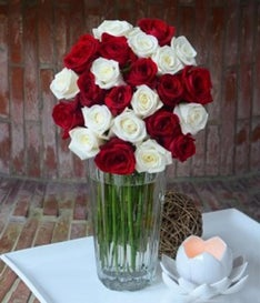 Two Dozen Red & White Combination Roses