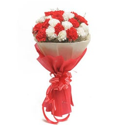 Red and White Carnations Bouquet