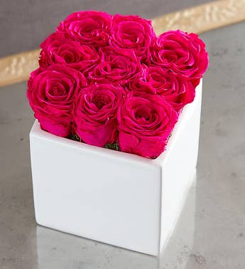 Preserved Pink Roses by Luxe Bloom  Large
