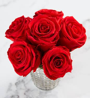 Preserved Red Roses by Luxe Bloom  Medium