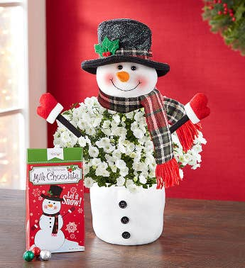 Frosty the Snow Plant with Chocolate  Free Candle
