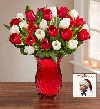 John Legend Holiday Album  Holiday Tulips