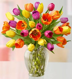 Assorted Tulips + Free Vase