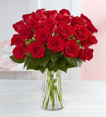 Two Dozen Romantic Red Roses